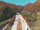 단풍, 고속도로의 가을(드론영상)